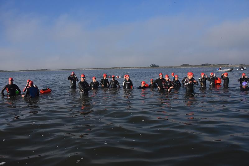 Undervejs kunne svømmerne tage sig et hvil på et meget lavvandet sted.